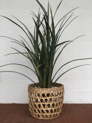 artificial plant, tropical, monsteria, wedding hire, party hire, melbourne, boho, prop hire